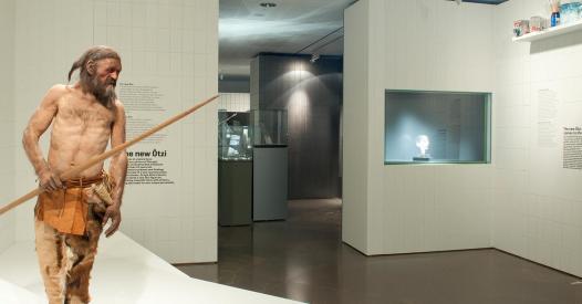 214 Tzimuseum S 252 Dtiroler Arch 228 Ologiemuseum 214 Tzi